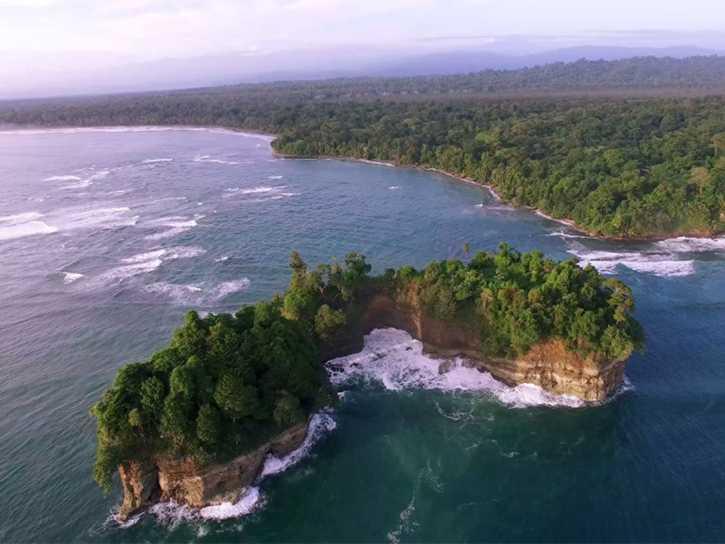 Regenerative TV Case Study: Punta Mona